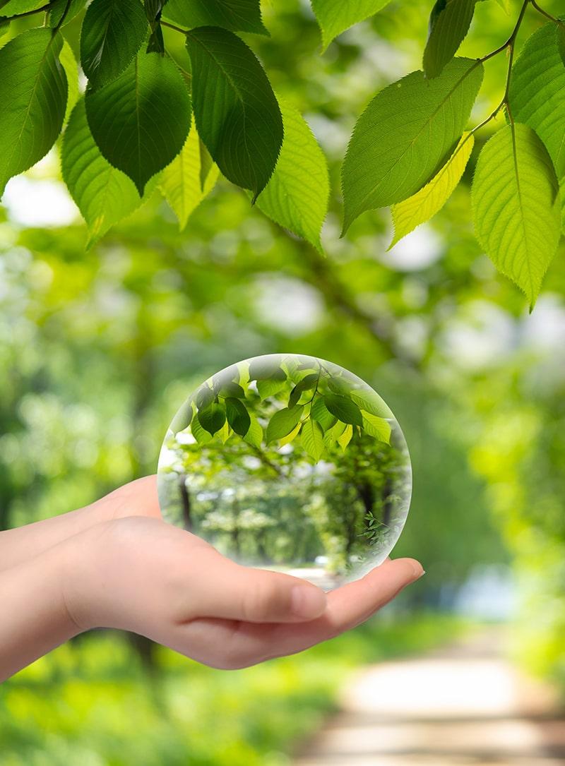 取り組み / 環境品質について